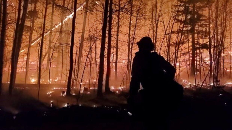 En brandmand ses, mens der er ild i Cameron Peak branden udenfor Drake i Colorado.