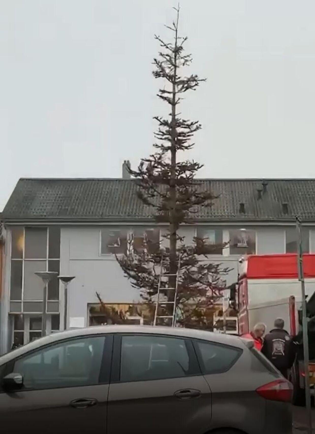 Juletræet i Aars er netop sat op.