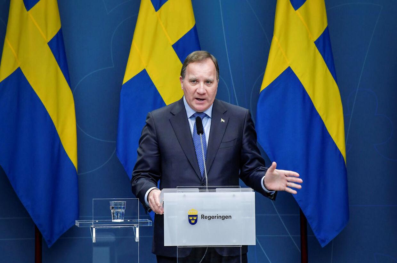 Den svenske statsminister annoncerede mandag et forsamlingsforbud i Sverige på otte personer gældende fra den 24. november og fire uger frem. Her er Stefan Löfven under et pressemøde den 3. november.