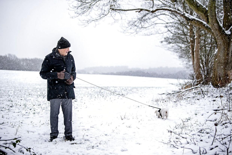 Under coronapandemien har Jørn Hjorting og hans kone nærmest levet i hi. Eneste daglige undtagelse har været gåturen med hunden Bailey.