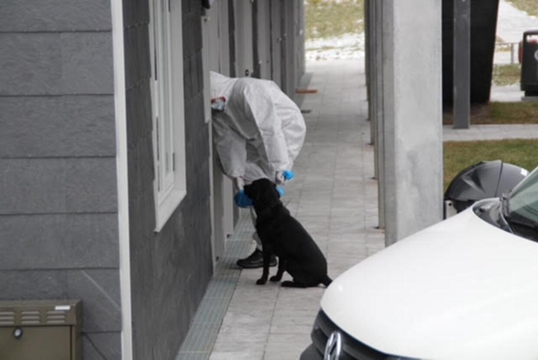 Betjente og teknikere har undersøgt en lejlighed i Apotekerhaven.