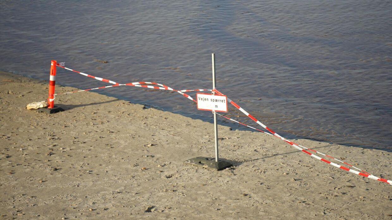 To familier har indtil videre siddet fast i kviksandet. Foto: Presse-fotos.dk