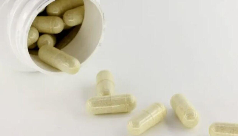 Det er i kapsler med Husk Psyllium-frøskaller, at der er konstateret fund af salmonella.