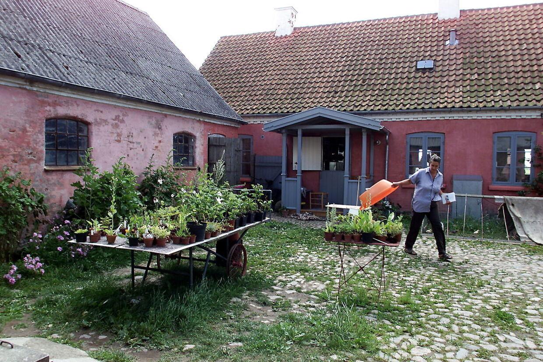 Den økologisk drevne Fuglebjerggard er både gårdbutik, planteskole og kursusvirksomhed for Camilla Plum.