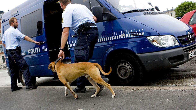 Hvis politiets hunde kommer frem under det kommende EM i København, så skyldes det formentlig ikke corona, da forsamlingsforbudet ophæves udendørs fredag 11. juni.