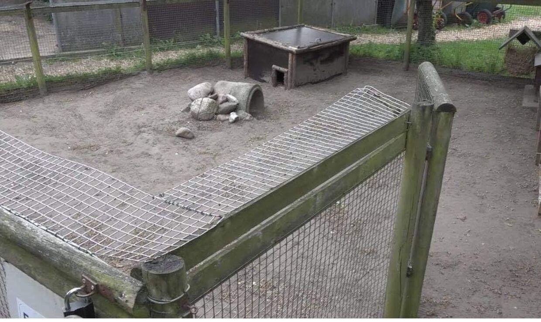 Lågen til buret er altid aflåst. Dog kan man god vilje godt hoppe over det.