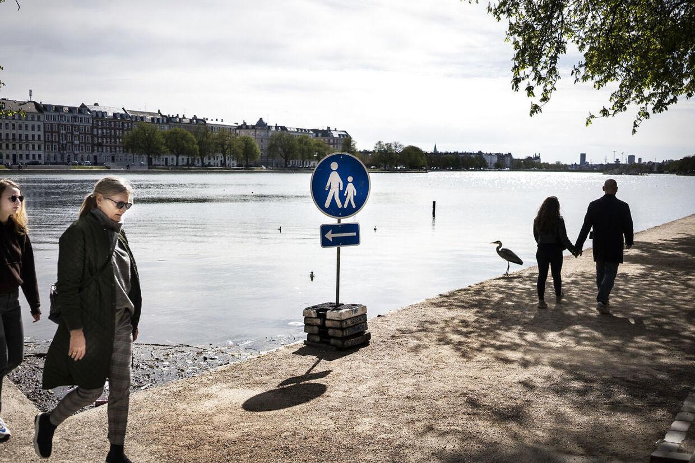 Nu dropper Københavns Kommune ensretningen rundt om søerne.