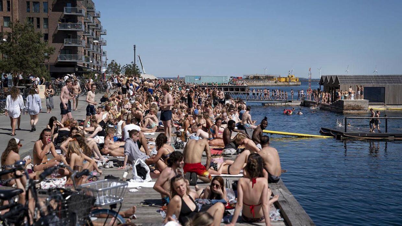 Nordhavnen er et af de steder, hvor der er problemer med sommerfester. Billedet her er fra tidligere på sommeren.