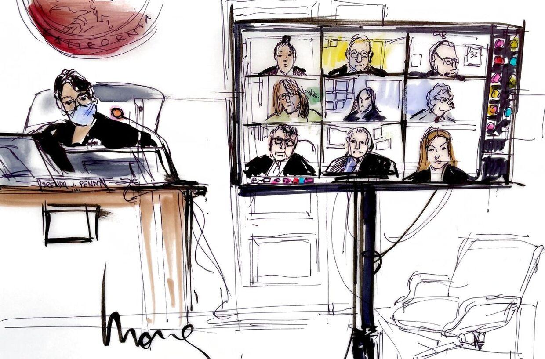 Høringen foregik via videomøder. Denne tegning viser dommer Brenda Penny og de andre deltagende.