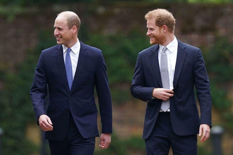 Billeder som disse af de to smilende og glade brødre bringer minder om gamle dage.
