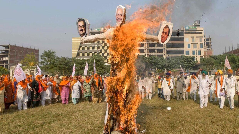 Landmænd brænder billeder af premierminister Mukesh Ambani og Gautam Adani af for at protestere mod refomer, som er kommet de to rigmænd til gavn.