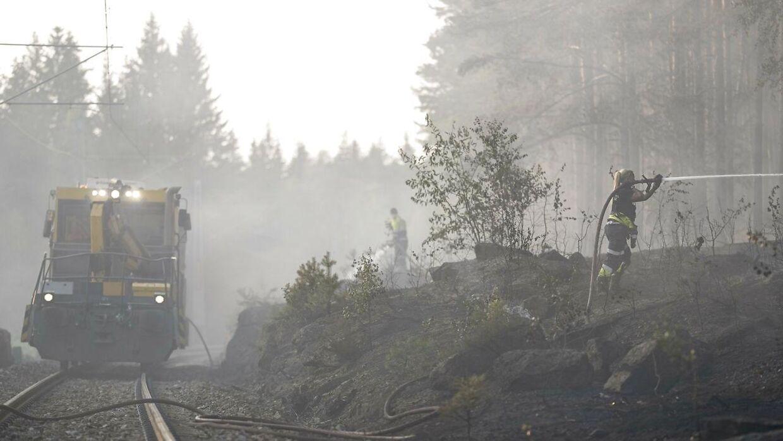 Brandvæsenet i Norge har kæmpet for at slukke skovbranden langs Gjøvikbanen i Maridalen.