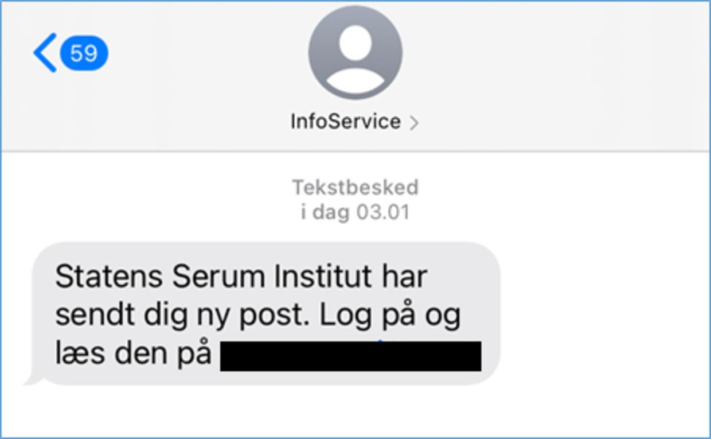 Sådan kan smishing-sms'er se ud. SSI opfordrer borgere der modtager beskeden til at slette den med det samme. Foto: SSI.