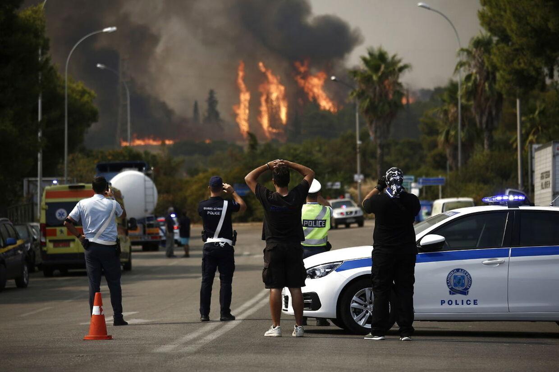 Borgere og politi betragter magtesløst skovbrandene i Varybobi uden for Athen.