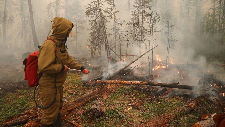 Et par varme somre de senere år har medført en række større skovbrande i Sibirien.