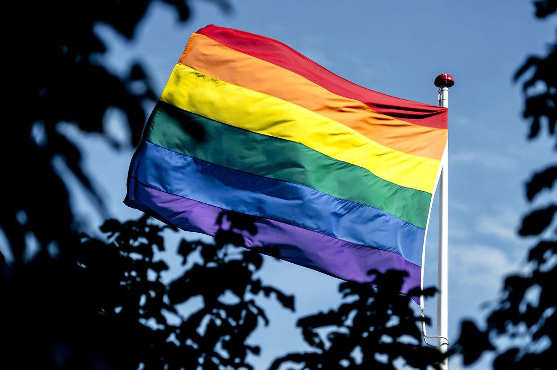 »Skal kommunen flage med regnbueflaget?,« starter Villum Christensen (LA), som er viceborgmester i Slagelse, et indlæg på Facebook. (Foto: Mads Claus Rasmussen/Scanpix 2017)