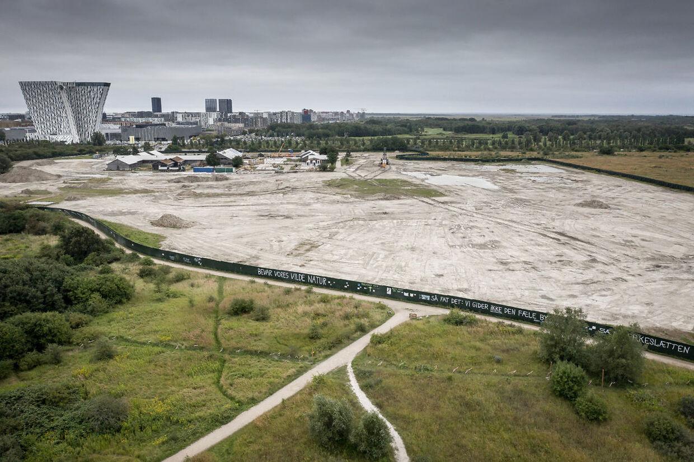 Lærkesletten på Amager Fælled, hvor byggeprojektet står til af skulle opføres. Foto: Mads Claus Rasmussen/Scanpix