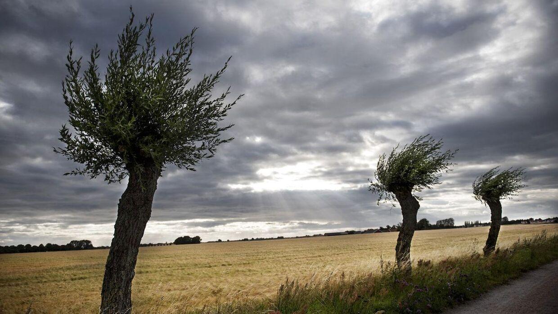 Tirsdagen bliver en blanding af skyer og sol. (Arkivfoto)