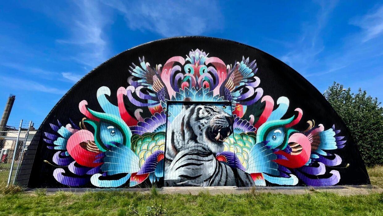 Streetartkunstner Frida Stiil Vium fra Aalborg har lige været i Helsingborg for at male et stort gavlmaleri. Hun har både malet i Sydamerika og Florida. Hun brugte Karolinelund til at øve sine gavlmalerier.