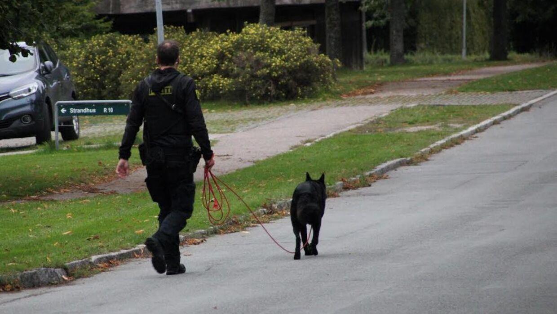 Politiet leder efter en gerningsmand efter et røveri i Roskilde (Foto: Presse-fotos.dk)