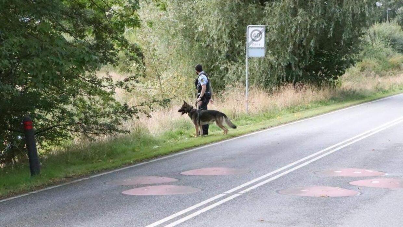 Politiet ledte efter manden ved Greve.