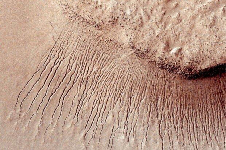 Er disse striber tegn på vand på Mars? Måske kan Nasa give os svaret mandag eftermiddag. Foto: AFP PHOTO / NASA/JPL-Caltech/University of Arizona