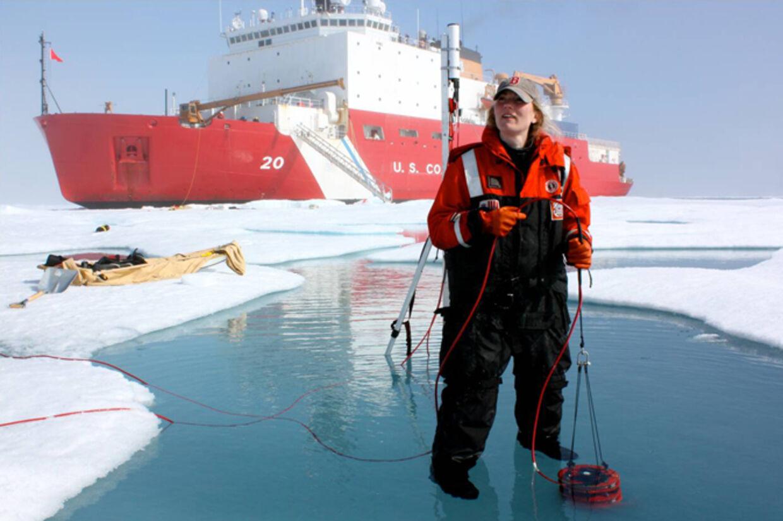 Et forskningsteam har gjort et bemærkelsesværdigt fund nord for Alaska i det arktiske hav Chukchi-havet. Modsat hvad man tidligere har troet, vokser planteplankton meget hurtigere under is end i åbent vand.