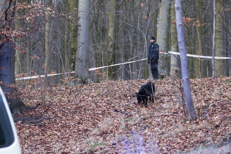 Politiet leder efter spor med hunde i Hareskoven ved Værløse, hvor en 20-årig mand blev skudt i ryggen søndag eftermiddag