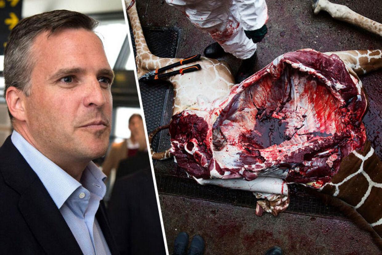 Den amerikanske ambassadør, Rufus Gifford, er chokeret over aflivningen af giraffen Marius