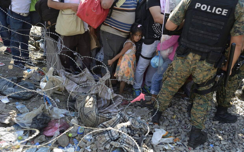 Flygtninge står som sild i en tønde ved byen Gevgelija på grænsen mellem Makedonien og Grækenland. (Foto: EPA)