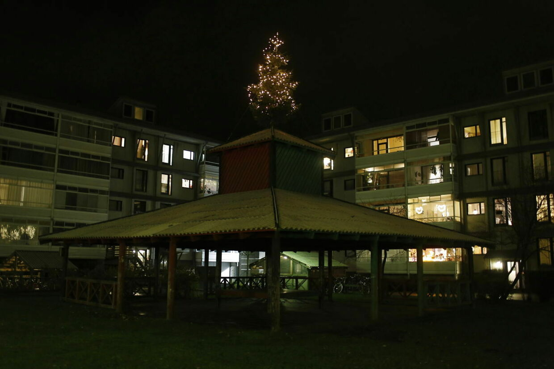 Endelig kom det op: Juletræet i Egedalsvænge