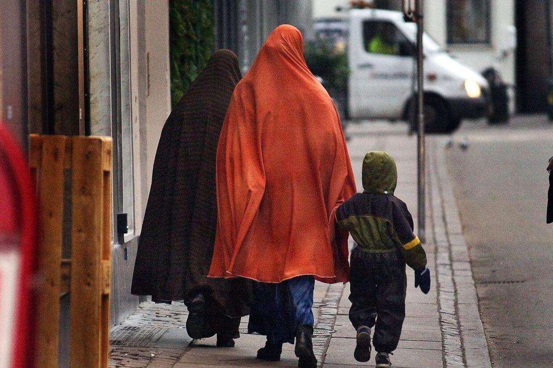 Somaliske familier har skabt problemer i et legeland i Aarhus. Arkivfoto.