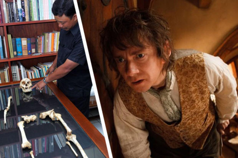 Til venstre: Knoglerester fra minimennesket fra Flores. Til Højre: Hobbitten Bilbo Sækker.