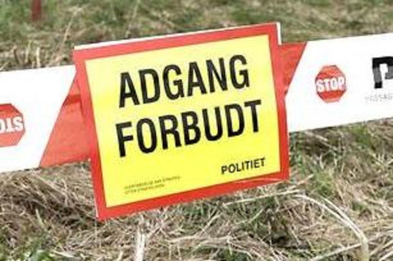 En 39-årig mand fra Jyderup blev dræbt under en træfældning onsdag (Arkivfoto).