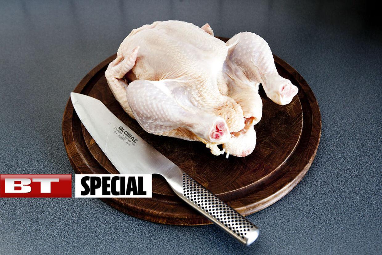 I mere end hver anden importerede kylling og hver 10. danske kylling findes multiresistente ESBL-colibakterier