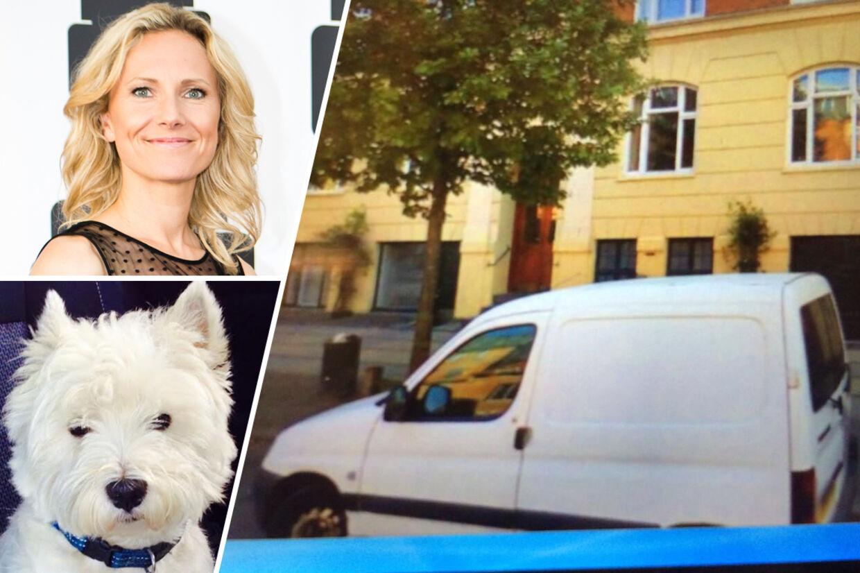 Charlotte Beders hund Coco befandt sig i professionel hundelufters hvide Peugot, da bilen blev stjålet.