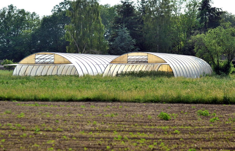 Det var tilsyneladende heller ikke denne gård i Niedersachsen, som smitten stammer fra.
