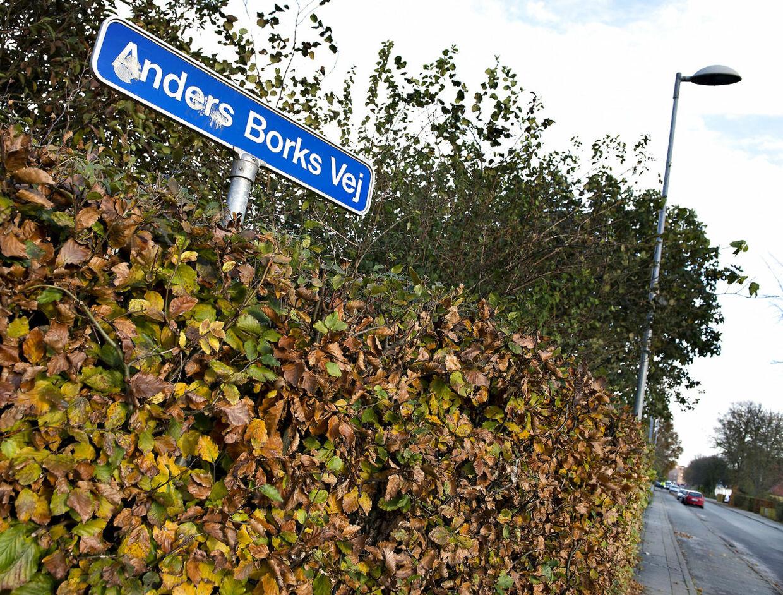 To kamphunde angreb fredag morgen en kondiløber på Anders Borks vej i Aalborg. Angrebet skete på fortovet her.