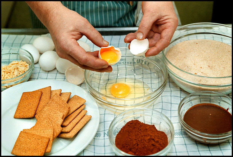 salmonella æg