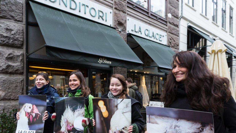 Onsdag var medlemmer af dyrevelfærdsorganisationen Anima mødt op foran Conditori La Glace i København, for at demonstrere mod dets brug af buræg.
