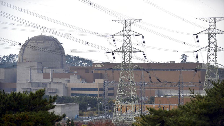 Tilsynsmyndighederne i Sydkorea har fundet mikroskopiske revner i tunnellerne på et atomkræftværk, oplyser embedsmænd fredag til Reuters.