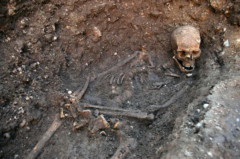 Skelettet af kongen.