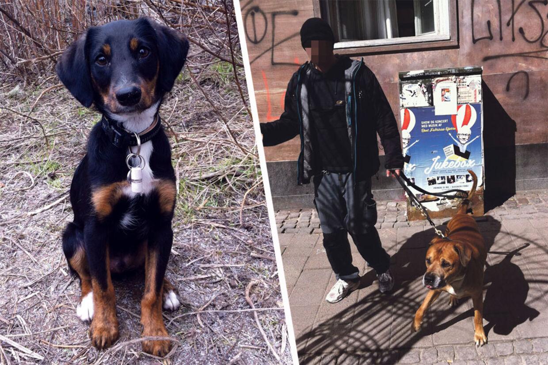Her er hundeejeren med sin amstaff-kamphund, der bed lille Vaks til døde. Mens Vaks' pårørende ventede på, at politiet skulle komme, gik kamphundens ejer ind i en kiosk og købte øl, som han drak, imens han ventede.