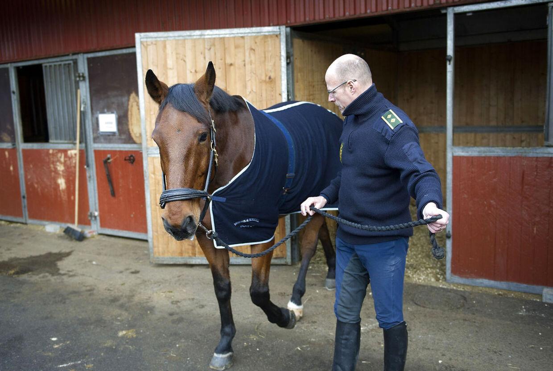 Kristian Madsen er en de heldige, der får mulighed for fortsat at kunne ride på sin makker gennem otte år, den 15-årige vallak Vittrup. Da han bor i Odsherred i Nordvestsjælland, har han nemlig fået mulighed for at have hesten opstaldet som ridehest.