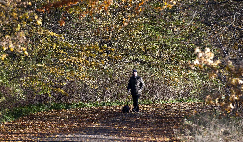 Det milde novembervejr fortsætter weekenden igennem. Lørdag byder dog på en chance for solskin i visse dele af landet.