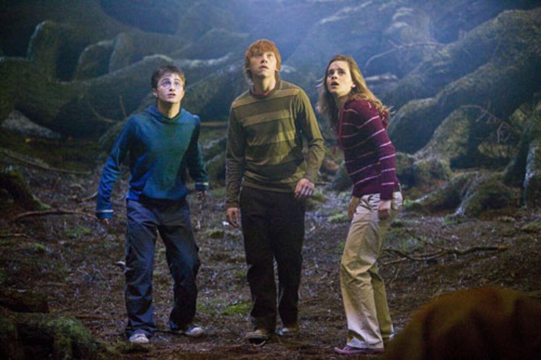 Harry og Hermione tilslutte sig