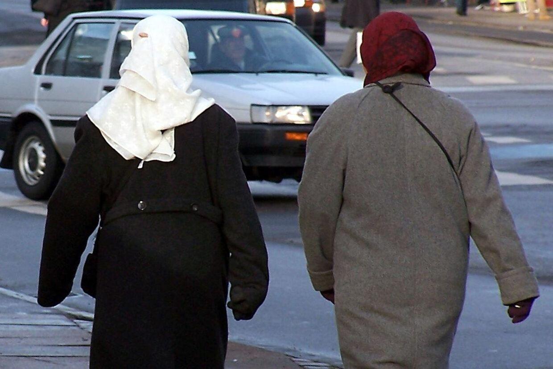 Indvandrerne fra ikke-vestlige lande halter bagud, når det kommer til beskæftigelse og uddannelse.