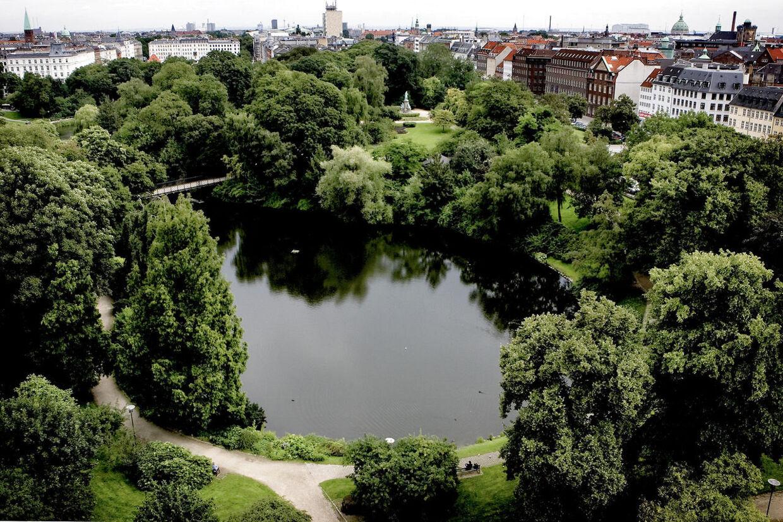 En 24-årig mand er kendt skyldig i voldtægten af en 22-årig mand. Voldtægten fandt sted i Ørstedsparken i august 2012.