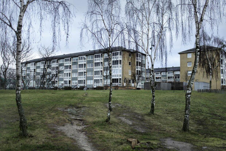 Motalavej i Korsør er i den senere tid blevet hærget af unge indvandrerdrenge.