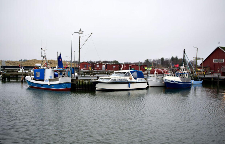 I en lille havn som som Aalbæk Havn får smuglerne arbejdsro.